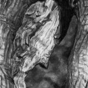 """CHÊNE, Bois Genoud, N°26"" - 2015 - 16 x 21 cm"