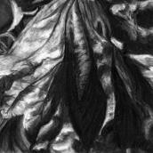 """CHÊNE, Morrens, N°16"" - 2015 - 27 x 16 cm"