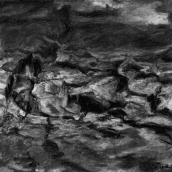 """SAPIN BLANC, Crêt-du-Locle, N°20"" - 2015 - 18 x 18 cm"