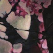 """Ma Forêt enchantée I"" - série Sakura - 2015 - 60 x 30 cm"