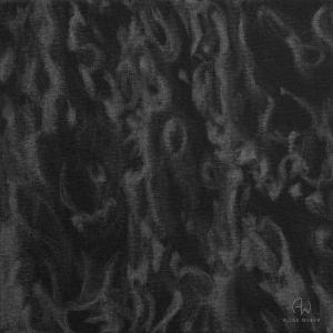 """""""Reflet N°5"""" - 20 cm x 20 cm - 2017 - Graphite pur sur toile noire"""