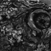 """CHÊNE, Morrens, N°11"" - 2015 - 27 x 16 cm"