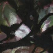 """""""Sans-titre N°1"""" - Série Sakura - 2012 - 30 x 30 cm"""