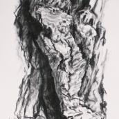 """""""Être de bois N°5"""" - 50 cm x 70 cm - 2017 - fusain naturel sur papier"""