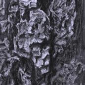 """""""Le gardien N°1"""" - 30 cm x 40 cm - 2017 - fusain naturel sur papier"""