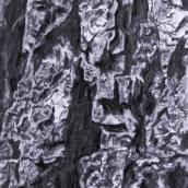 """""""Le gardien N°2"""" - 30 cm x 40 cm - 2017 - fusain naturel sur papier"""