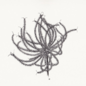 Benoîte-mille-pattes (n°1) - 2018 - dessin à la plume et à l'encre sur papier - 29 x 20 cm